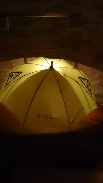 Denkt an eure Liebste am Valentinstag beleuchteter Regenschirm Stridelite