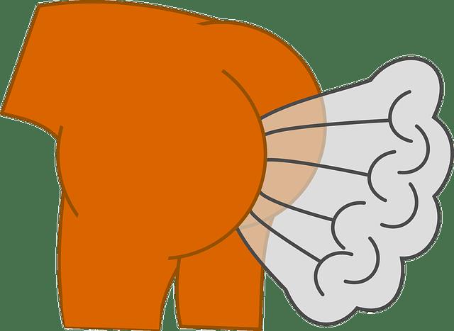 Warum der Geruch von einem Furz gesund ist